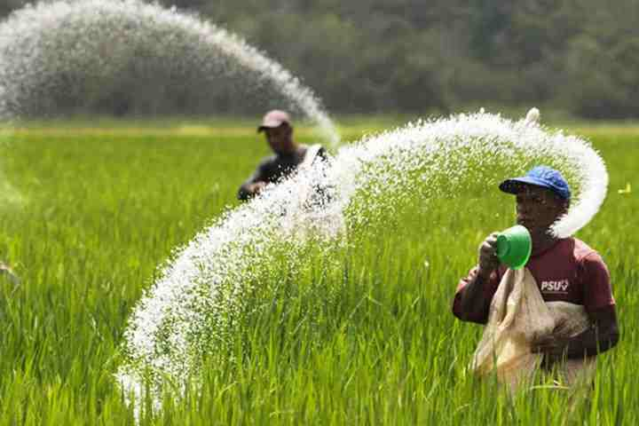 pestisida pemanasan global