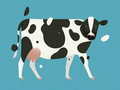 cerita dongeng sapi dan kerbau