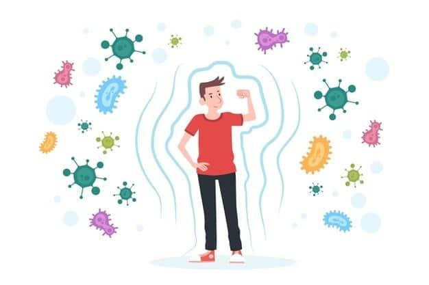 fungsi protein kekebalan tubuh