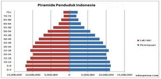 piramida penduduk adalah