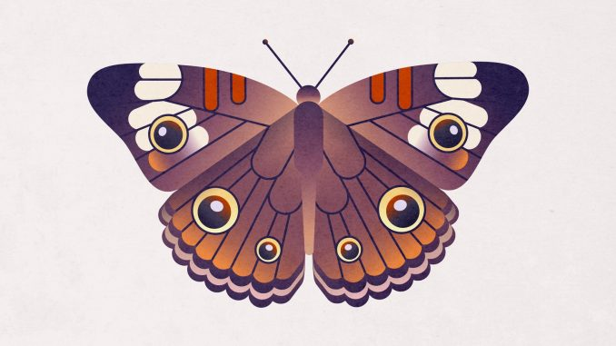6 Macam Simbiosis dan Contohnya Penjelasan Lengkap ...