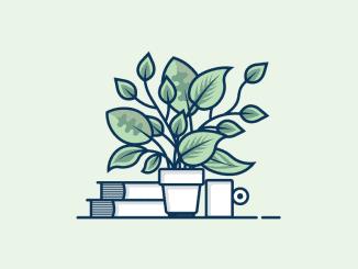 tanaman hidroponik