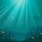 Reproduksi Ikan Badut Terancam Karena Polusi Cahaya